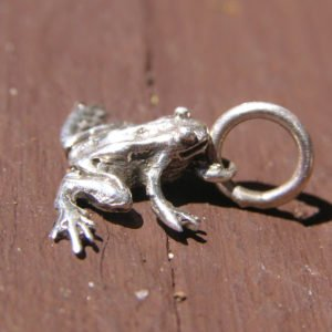 Tree Frog Sterling Silver Charm