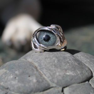 Sterling Silver 2 Hands Prosthetic Eye Ring ~ Order Here!